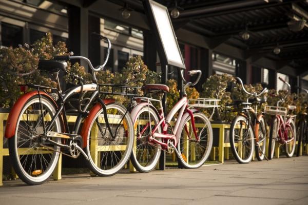 Contributi per l'acquisto delle biciclette: i primi cittadini vincitori
